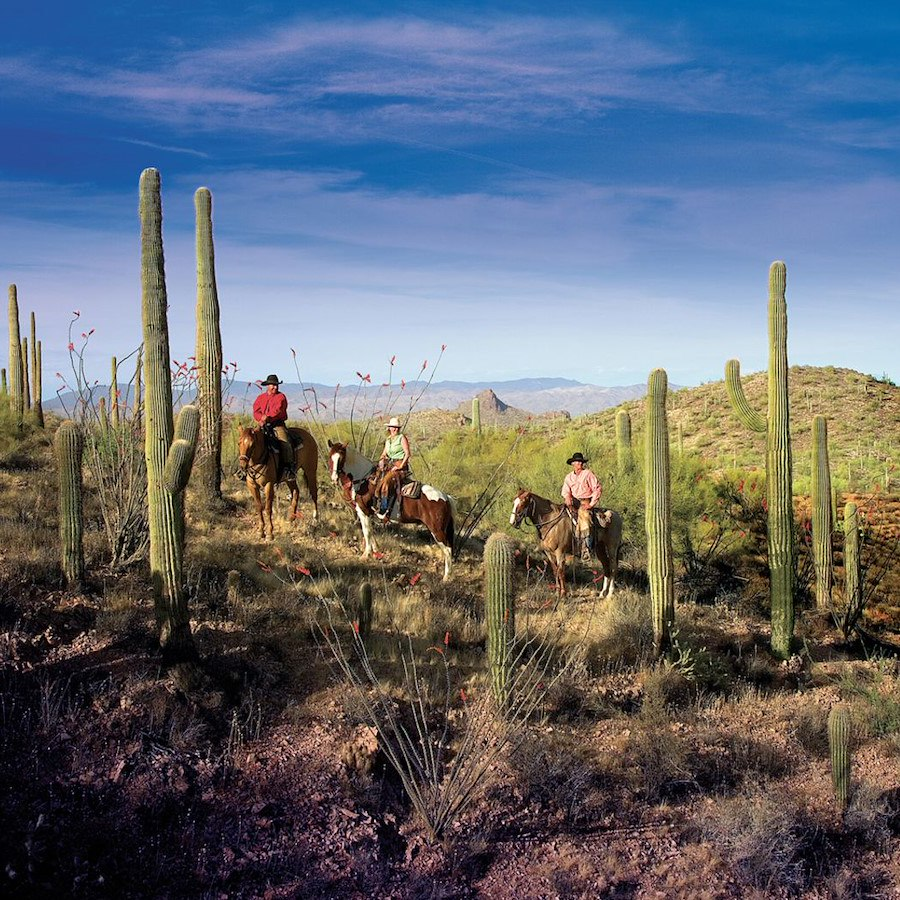 Horseback Riding at Rancho de los Caballeros in Wickenburg, AZ